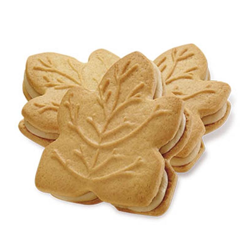 Biscuits feuille d'érable